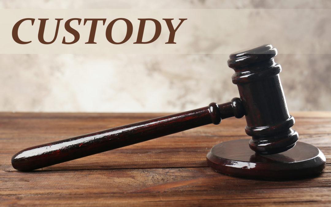 Algunos factores que pueden cambiar la decisión del juez durante el proceso de la custodia legal de los hijos en Estados Unidos