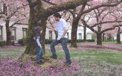 ¿Cómo Puede un Padre Obtener la Custodia Total de su Hijo?