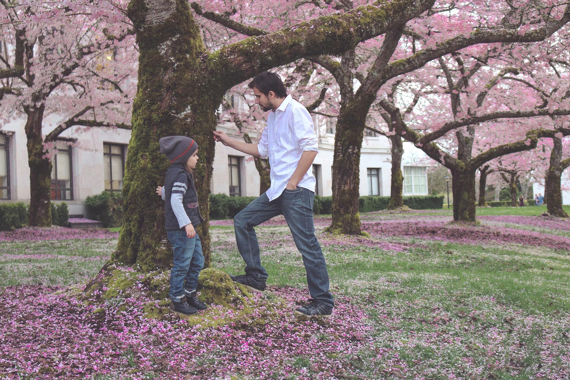 Cómo Puede un Padre Obtener Custodia Total de su Hijo